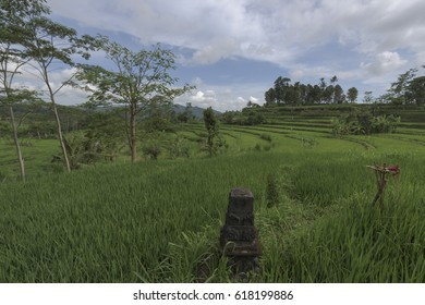 Landscape on Bali island in Indinesia