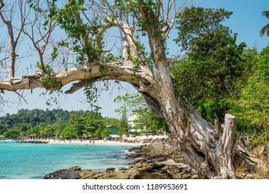 Landscape on the coast of the tropical sea. South-East Asia