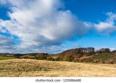 Landscape on the island Moen in Denmark.