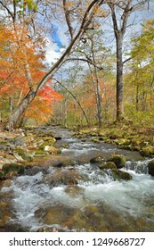A landscape on small woodsy river, autumn.