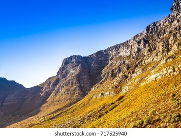 Landscape on top of the table mountain nature reserve in Cape Town at South Africa in summer