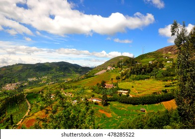 Landscape of Ooty. Ooty or Ootacamund is a popular hill station in India.