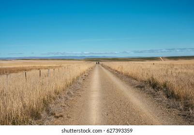 Landscape Otago Rail Trail