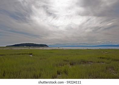 Landscape over marshes