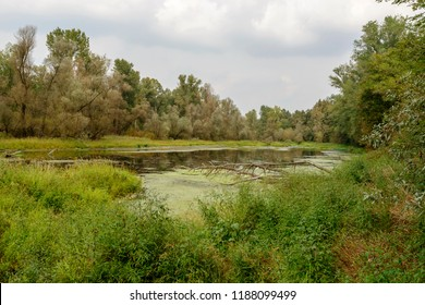 landscape  of oxbow lake at Ticino river , shot in a bright cloudy fall day  in Ticino park near Bernate, Milan, Lombardy, Italy