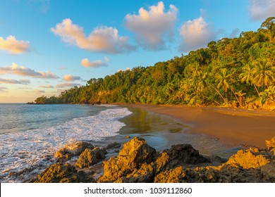 Landscape of the Pacific coastline and tropical rainforest of Costa Rica at sunset inside Corcovado national park, Osa Peninsula, Central America.