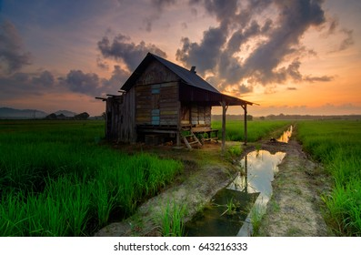 Landscape of a paddy field with Abandoned house during sunrise. This image may contain noise and blurry clouds due to long exposure and Soft focus