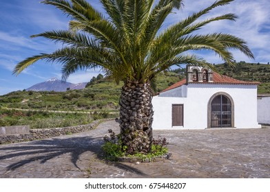 Landscape with palm tree and hermitage with view to the volcano Teide in the background, in San Jose de los Llanos, in the municipality of the Tank, north of Tenerife, Canary Islands