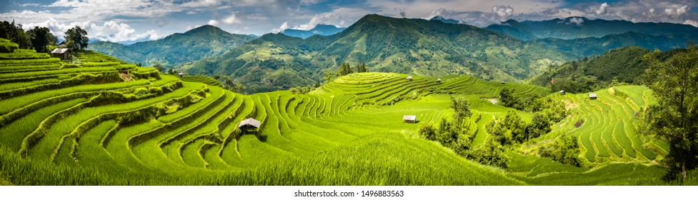 Landscape panorama of Vietnam, terraced rice fields of Hoang Su Phi district, Ha Giang province. Spectacular rice fields. Stitched panorama shot.