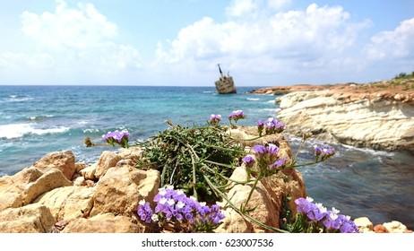 landscape in Paphos, Cyprus