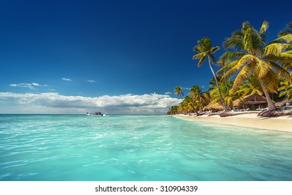 Landscape of paradise tropical island beach with perfect sunny sky