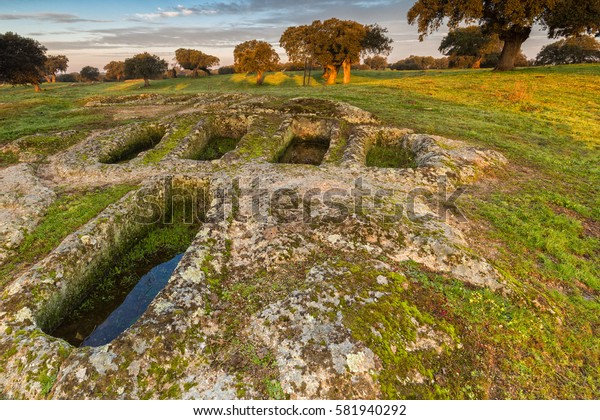 Landscape in pasture, the graves are archaeological remains of IV century AD approximately. Arroyo de la luz. Spain.