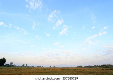 Landscape of a peaceful rice field on morning sky background : Thailand