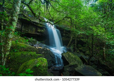 Landscape of peaceful waterfall with green moss in the tropical rainforest, waterfall in Phu Kradueng National Park, Loei Province, Thailand