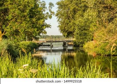 Landscape with peat river Kromme Aar in Alphen aan den Rijn during sunrise with warm colors and tree-covered banks and view on bridge in Burgemeester Bruins Slotsingel towards Zegeplas