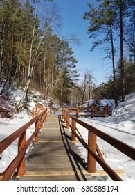 Landscape, pedestrian track in the reserve in Siberia