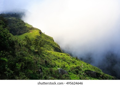 The landscape photo, beautiful sea fog in morning time at the top of mountain, Loei province in Thailand.
