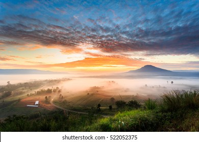 The landscape photo, beautiful sea fog in morning time at Khao Kho, Phetchabun in Thailand