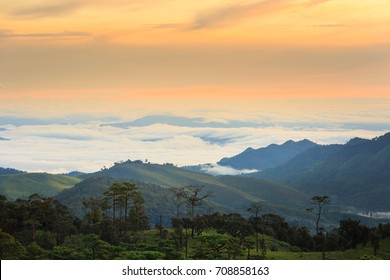 The landscape photo, beautiful sea fog in morning time at Phu Soi Dao National Park,Thailand