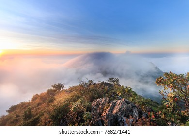 The landscape photo, beautiful sea fog in morning time at Doi Luang Dao Forest Park, Chiangmai, Thailand.