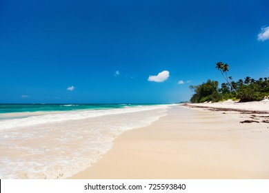 Landscape photo of beautiful white sand exotic beach in Kenya Africa