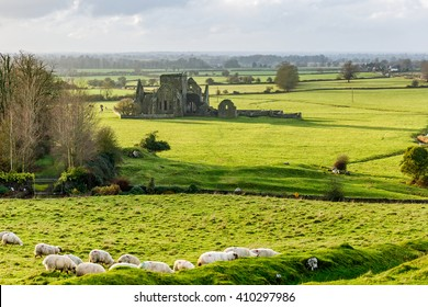 Landscape photo of Hore Abbey in Cashel county Tipperary