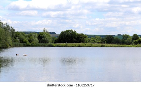 Landscape photo of the Langford Lakes nature reserve with wild birds, in the Wylye Valley,South Wiltshire,England,United Kingdom.Attractive stopping off point for those who enjoy bird watching.