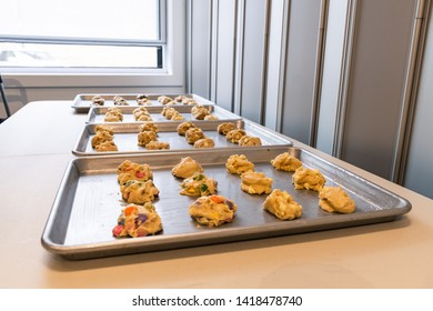 Landscape photo of multiple cookes / uncooked cookie dough with smarties on the baking tray with soft light coming from behind.