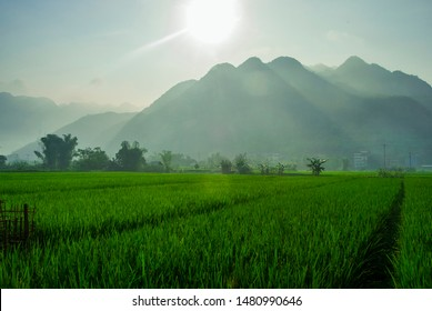 Landscape photo of a sunny day over lush green fields with mountains in the background. Shot in Mai Chau, Northern Vietnam.