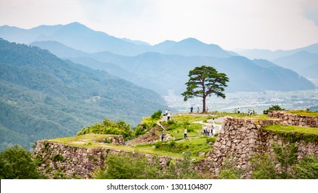 Landscape photo of visitors and a lone tree at Takeda Castle Ruins located in Hyogo Prefecture's Asago City, which is a popular side trip from nearby Himeji, with mountain range in the background.