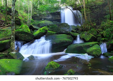Landscape photo, Waterfall in deep forest during rainy season at Phu Kradung National Park, Thailand.
