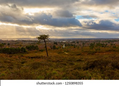 Landscape photograph taken on Canford heath nature reserve looking out onto Poole town under a dramatic cloudy sky.
