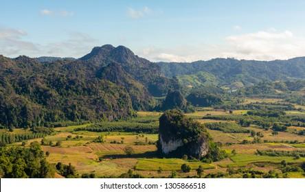 landscape Phulangka view