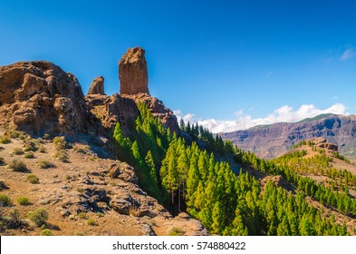 Landscape of Pico de las Nieves in Gran Canaria/ Pico de las Nieves/ Landscape Pico de las Nieves in Gran Canaria, Canary Islands - Spain.