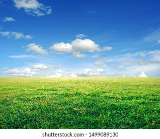 landscape picture of green grass field and blue sky with white clouds.