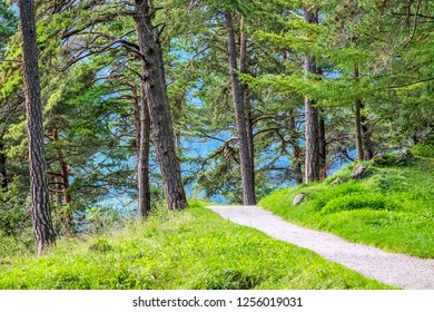 Landscape picture with path and trees Garmisch-Partenkirchen in autumn