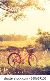 Landscape picture Vintage Bicycle with Summer grass field at sunset ; vintage filter style. for greeting Cards ,post card