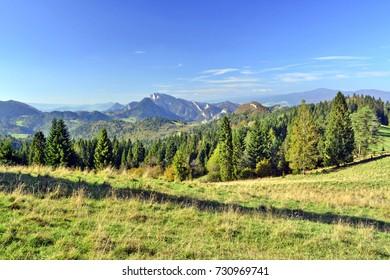 Landscape in Pieniny mountains, Poland