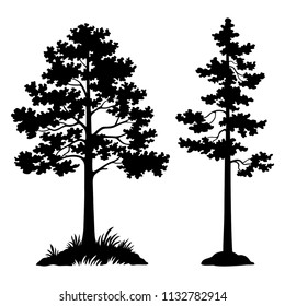Landscape, Pine Trees Black Silhouette Isolated on White Background.