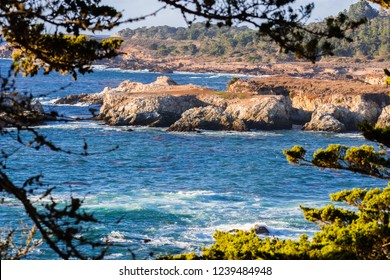 Landscape in Point Lobos State Natural Reserve on the Pacific Ocean coastline, close to Monterey and Big Sur, California