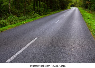 Landscape in Poland asphalt road into forest, early autumn