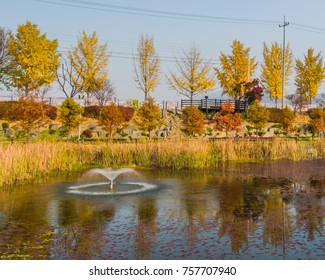 Landscape of pond surrounded by tall reeds and trees in fall colors with a small water fountain in the pond at a public park in Daejeon, South Korea