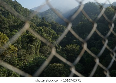 Landscape portrait of a forest area in Situgunung Park seen between a suspension bridge safety net. Mount Gede Pangrango is visible in the distance