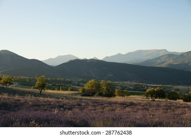 Landscape in Provence, France in summer