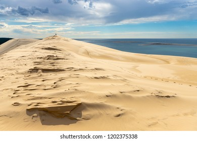 Landscape of the the Pyla dune, located in the Arcachon bay in Aquitaine, France, the biggest in Europe