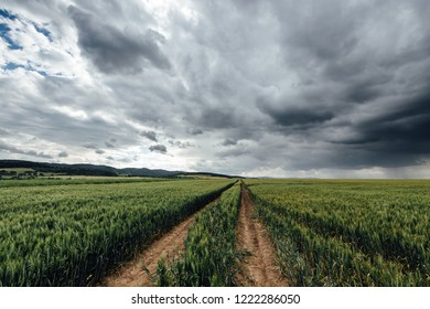 Landscape and rain clouds