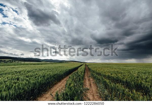 Landscape and rain clouds