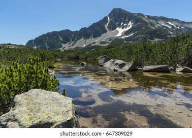 Landscape with Reflection of Sivrya peak in Banski lakes, Pirin Mountain, Bulgaria