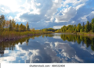 Landscape Reflections of Trees - Ranier, Minnesota