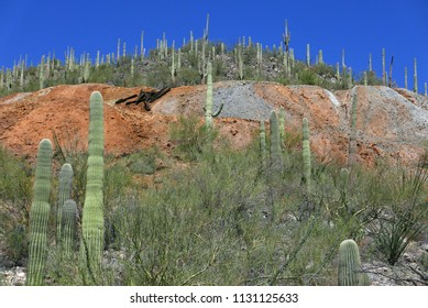 Landscape with remains of old mine (Gould Mine) in Tucson, Arizona, USA